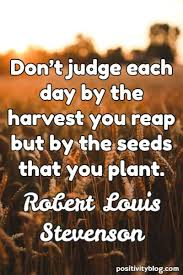 Don't judge each day by the harvest you reap but by the seeds that you plant