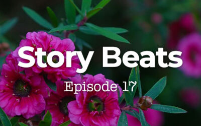017 Story Beats: Genesis 15 and Abram's Black Moment