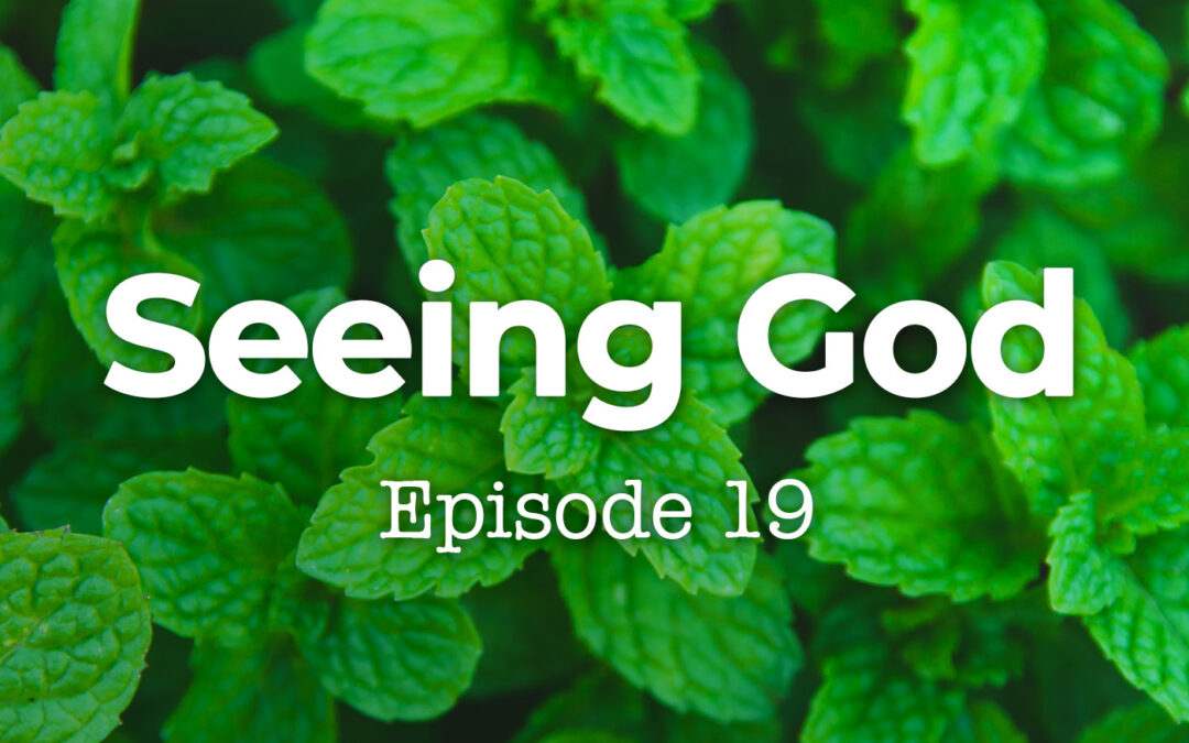 019 Seeing God: Genesis 16 and God's Answer to Problematic Attitudes Within Christianity